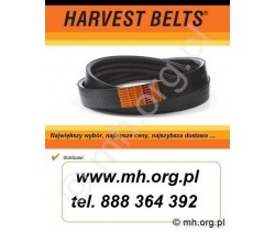 Pas MF 1724154M1 - HARVEST Belts - Sanok