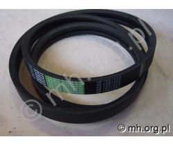 Pas 87564450, 1315266C1, 1001620 - OPTIBELT Germany