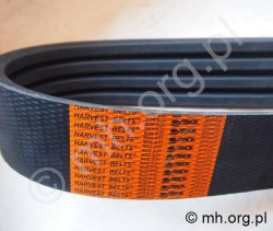 Pas NH 89593400 - HARVEST Belts - Sanok