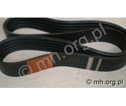Pas MF D41978300, 41978300 - HARVEST Belts - Sanok